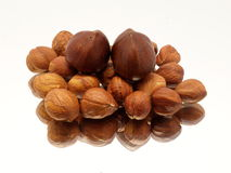 Pile of hazelnuts on mirror Royalty Free Stock Image
