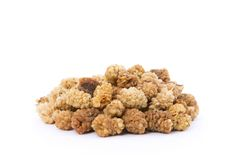 Organic Mulberries Stock Image