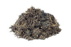 Pile heap of soil humus Stock Photography