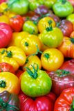 Pile of Heritage Tomatoes Stock Photography