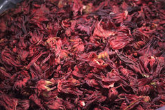 Pile of hibiscus flower. A pile of hibiscus dry flower from a market. Usually used to prepare tea Royalty Free Stock Image