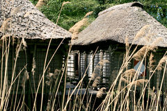 Pile-houses of Benin. Houses like these can be found in Ganvié, a village on the south coast of Benin royalty free stock photography
