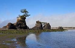 Pile insolite del mare, costa dell'Oregon Fotografia Stock