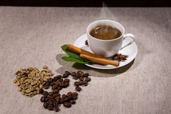 Pile of java beans and herbs with hot coffee. Pile of two types of different java beans and herbs beside steaming hot teacup full of coffee and saucer over gray Stock Images