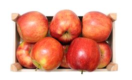 A pile of jonagold apples Royalty Free Stock Photo