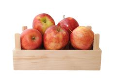 Jonagold apples Royalty Free Stock Photo
