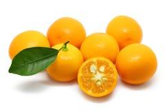 Pile Of Kumquats Isolated On White stock photo