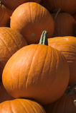 Pile of Large Pumpkins Royalty Free Stock Photos