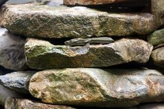 Pile of large stones abstract natural background stock photography