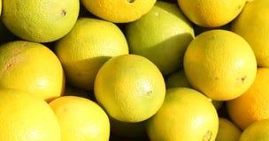Pile of lemon. Pile of fresh organic yellow lemons Stock Photos