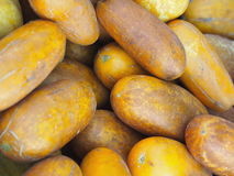 Pile of lemon cucumbers. Royalty Free Stock Photos