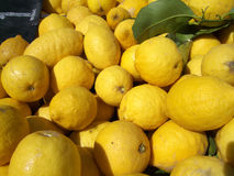 Pile of lemons. Pile of fresh, ripe yellow lemons royalty free stock image