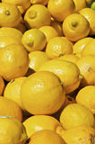 Pile of Lemons Stock Photos