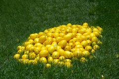 Pile of lemons in the grass Royalty Free Stock Images