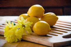 Pile of lemons and yellow flowers Royalty Free Stock Photos