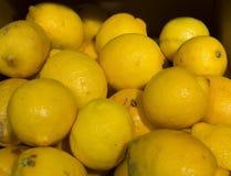 Pile of lemons Royalty Free Stock Image