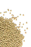 Pile of Lentils Stock Photography