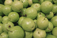 Pile of Light Green Fresh Guava, Testy and Healthy Tropical Fruits. Thailand Royalty Free Stock Images