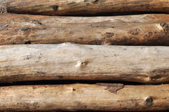 Pile of log Royalty Free Stock Images