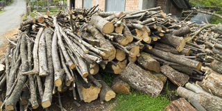 Pile of log Royalty Free Stock Photo