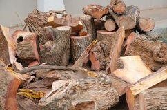 Pile of log Stock Images