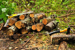A pile of logs Royalty Free Stock Images