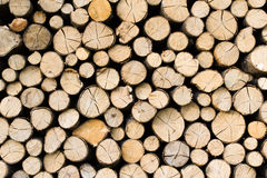 Pile logs Royalty Free Stock Photography