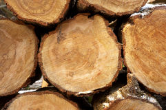 Pile of logs. Cut ready for use in a fire, some winter frost on the bark stock photo