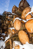 Pile of logs covered in snow Stock Photo