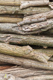 Pile of logs of firewood Stock Images