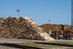 A pile of logs at the port ready for loading ships. A pile of logs at the port ready for loading to ships Royalty Free Stock Image