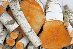 Pile of logs. Stock Photo