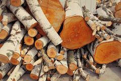 Pile of logs. Royalty Free Stock Images