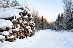 The pile of logs in winter Stock Photos