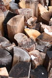 Pile of logs in winter Royalty Free Stock Photography