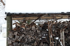 Pile of logs in winter Stock Images