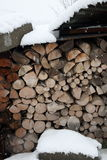Pile of logs in winter Stock Photography
