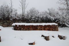 Pile of logs in winter. For heating, Pyrenees Royalty Free Stock Photo