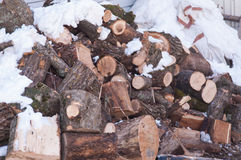 A pile of logs for wood prepared for the winter Stock Image