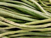 Pile of long beans. Full frame of long beans at market stock images