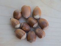 Pile of long hazelnuts. Photography of multiple long hazelnuts isolated on a wooden plate. Additional RAW file format available for download royalty free stock photos