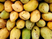 Pile of mangoes. Full frame of mangoes at market royalty free stock image