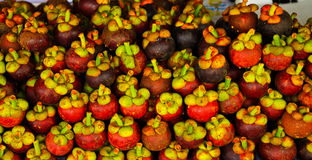 A pile of mangosteen Royalty Free Stock Photography