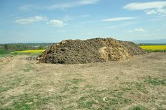 Pile of manure in the countryside with blue cloudy sky. Heap of dung in field on the farm yard with village in background. Traditional rural scene in black and Royalty Free Stock Image
