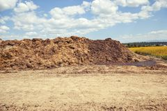 Pile of manure in the countryside with blue cloudy sky. Heap of dung in field on the farm yard with village in background. Traditional rural scene in black and Royalty Free Stock Photos