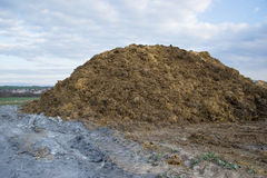 Pile of manure in the countryside with blue sky. Heap of dung in field on the farm yard with village in background. Traditional rural scene. Slovak landscape Royalty Free Stock Photography