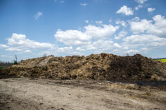 Pile of manure in the countryside. Heap of dung on the farm yard Royalty Free Stock Images