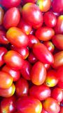 Pile of many fresh red cherry tomatoes stock photos