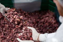 Pile of meat cube at meat factory Stock Images