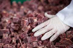Pile of meat cube at meat factory Royalty Free Stock Image